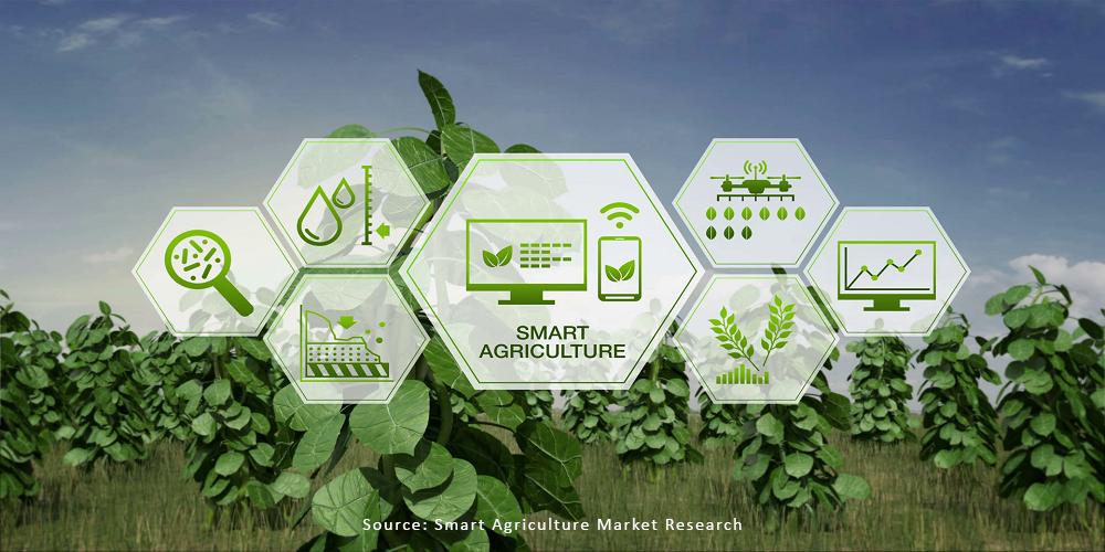 Tăng Cường Ứng Dụng Công nghệ Kỹ Thuật Số ở Ngành Nông nghiệp